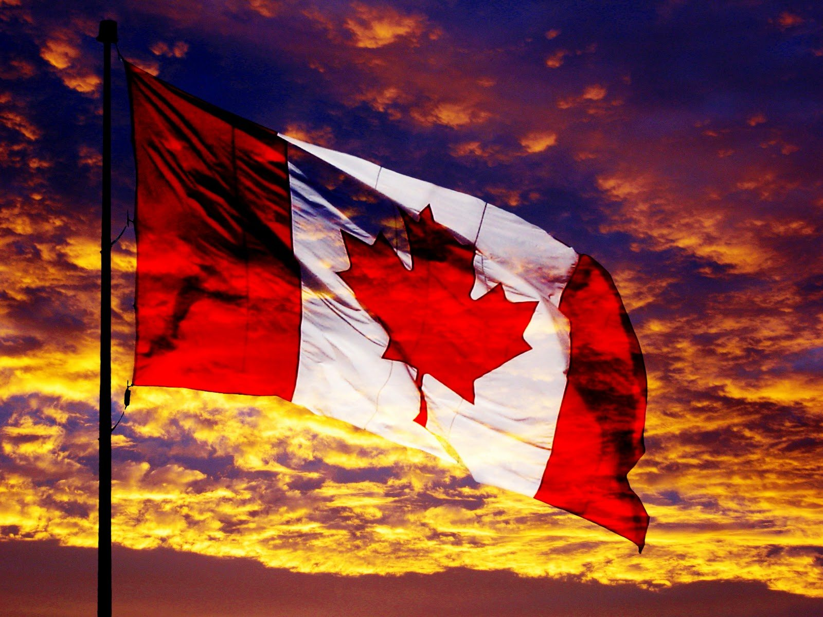 Government fund seeks organizations with national pride in for Discount wallpaper canada