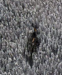 Crash site / via RCAF