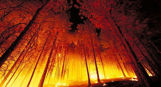 Two of BC's worst wildfires cost insurers more than $127 million